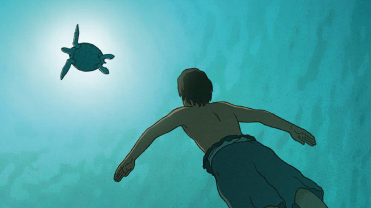 """Image du film """"La tortue rouge"""""""